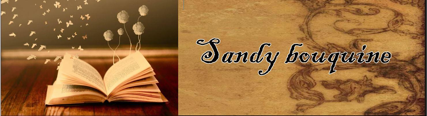 Sandy bouquine
